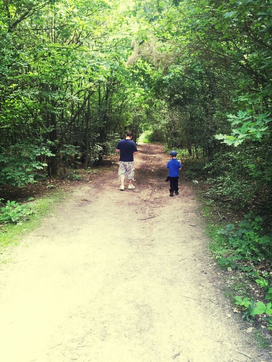 Hanging Out Walking Around Exploring Family Forest