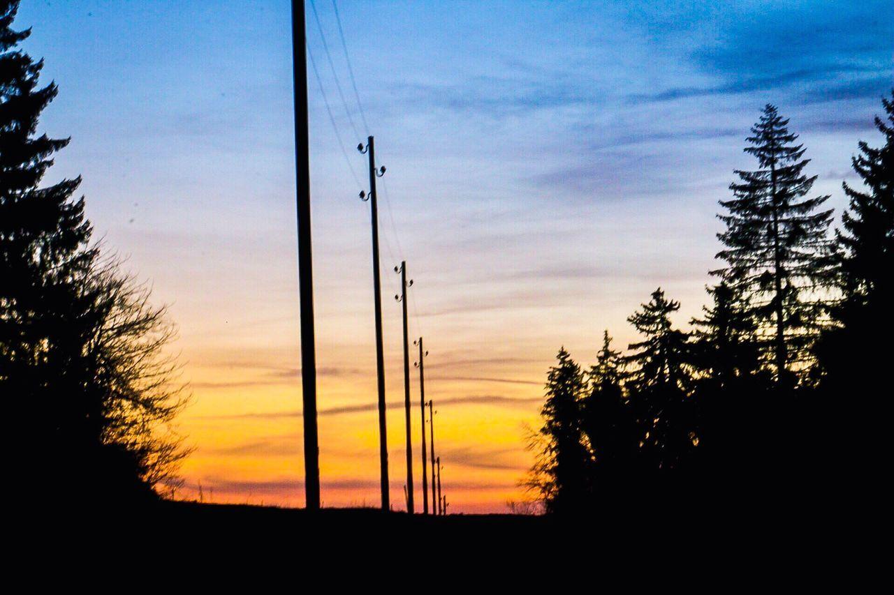 Sunset Sky Tranquil Scene Tree