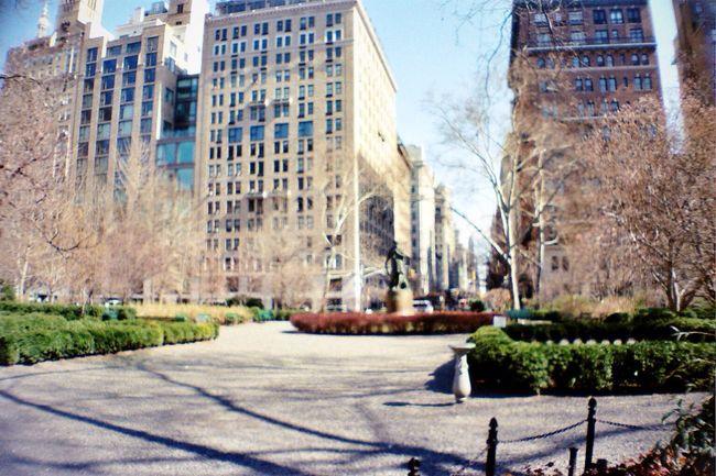 Madison Square Park  Madison Ave NYC Lasardina