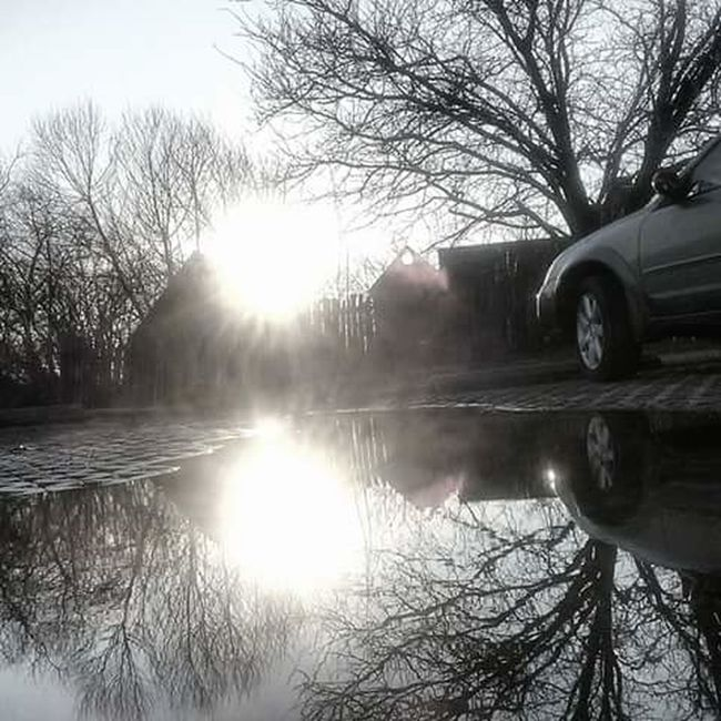 Black & White Water Puddle Reflections Creative Sun Reflection St. Mary's City MD USA