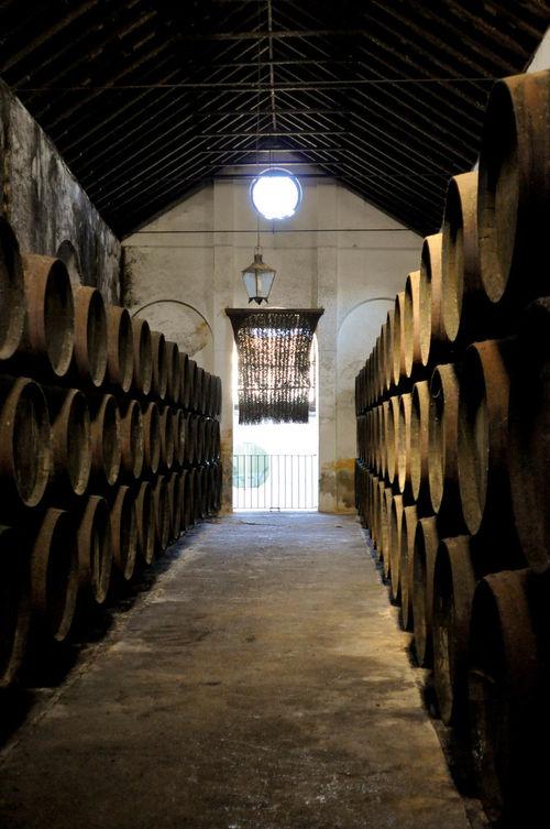 Sanlúcar De Barrameda Alcohol Criadera Manzanilla No People Solera Wine Wine Cask Wine Cellar Winery