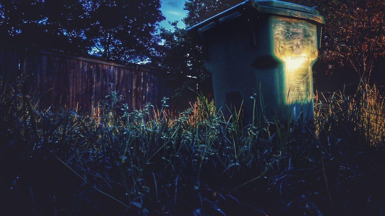 Portland recycles Night Photography Grass Recyclebin Light And Shadow Night Lights Long Exposure Lowlight First Eyeem Photo Portlandia Compost April Showcase Yard Backyard Recycle EyeEm Nature Lover Trashcan Trash Bin Trash Garbage Can Tall Grass My Favorite Photo