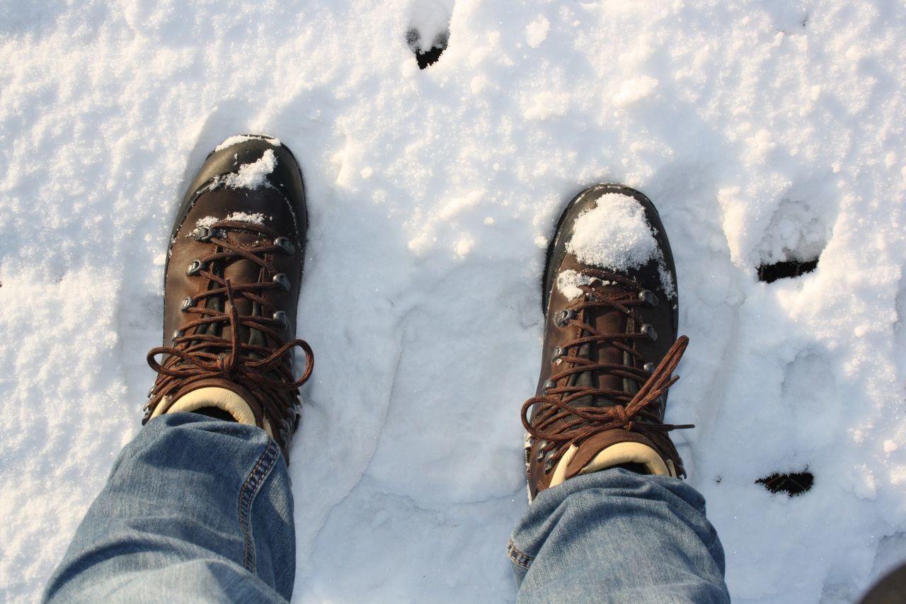 Animals In The Wild Day Freezing Landscape_photography Outdoors Shoes ♥ Snow Sunlight