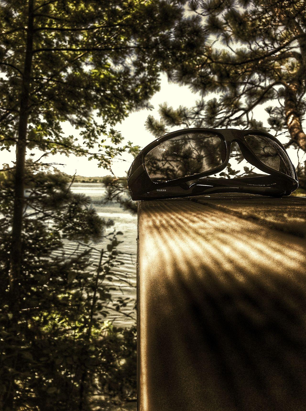 Shades Sunglasses Bemidji Whiskey Sour Minnesota Lake View