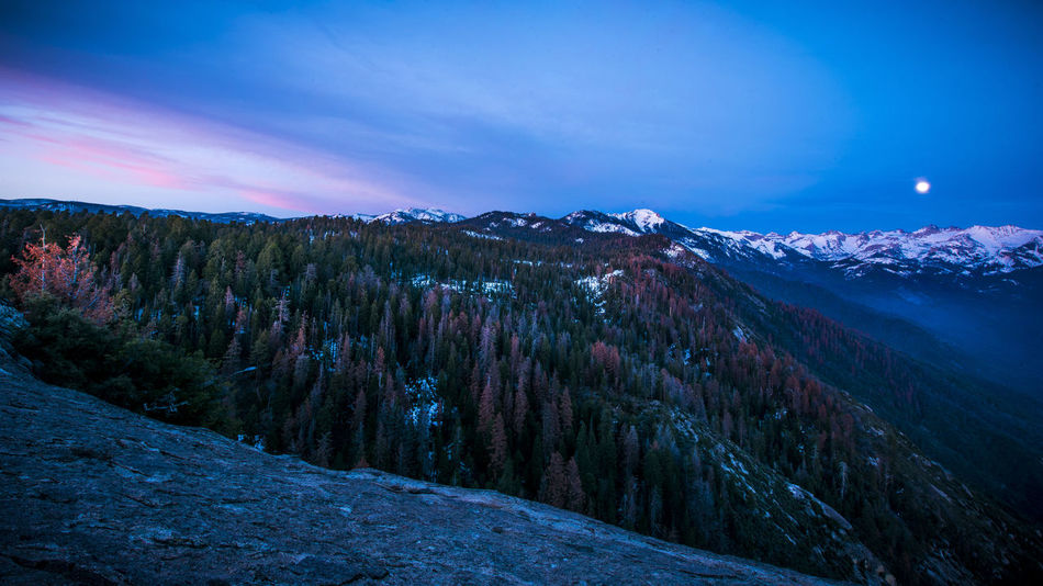 On top of Moro Rock in Sequoia National Park. Moon rose while Sun was setting. It was breathtakingly beautiful. Beauty In Nature California Cold Temperature Forest Landscape Moon Moon Rise Moro Rock Mountain Mountain Peak Mountain Range Nature No People Outdoors Scenics Sequoia National Park Sky Snow Sunset Travel Destinations Winter