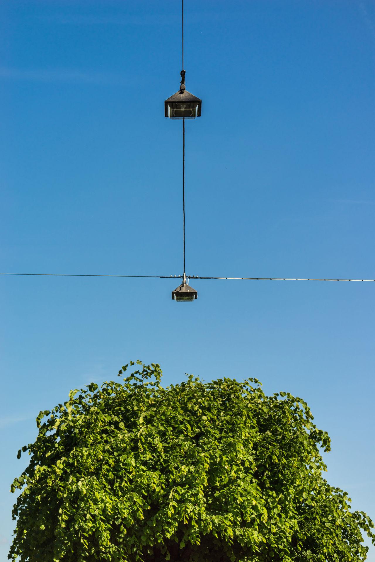 Art Blue Sky Daylight Lamp Minimalistic Nature Still Life Tree