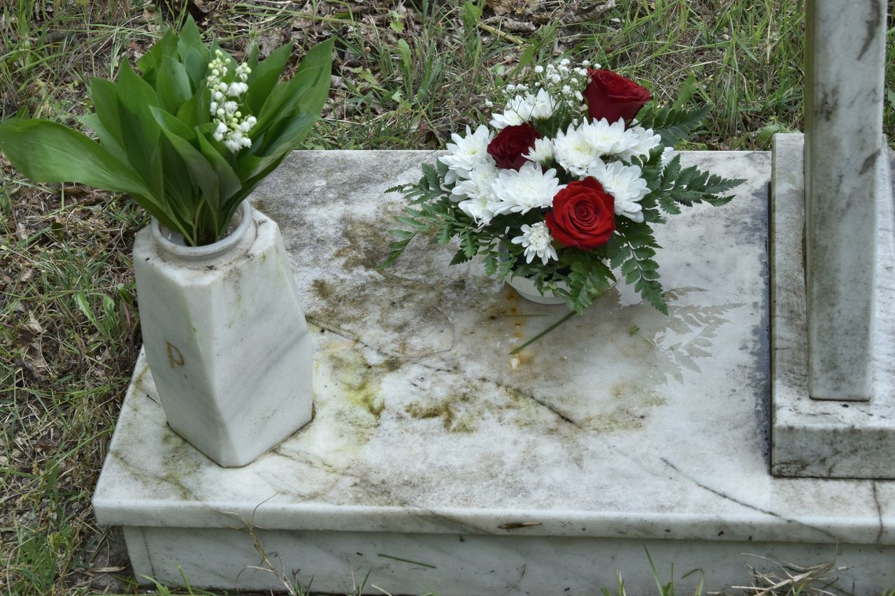 Close-up Crowning Day Flower Grave High Angle View Leaf Marble No People Outdoors Red Tombstone