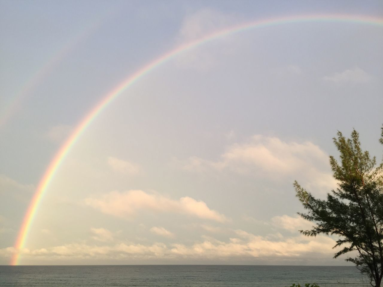 Rainbow Double Rainbow Scenics Sky Nature Beauty In Nature Tranquility No People Sea Day Cloud - Sky Beachphotography Beach Rainbow Sky Water Outdoors Multi Colored Horizon Over Water Tree rainbow over the ocean