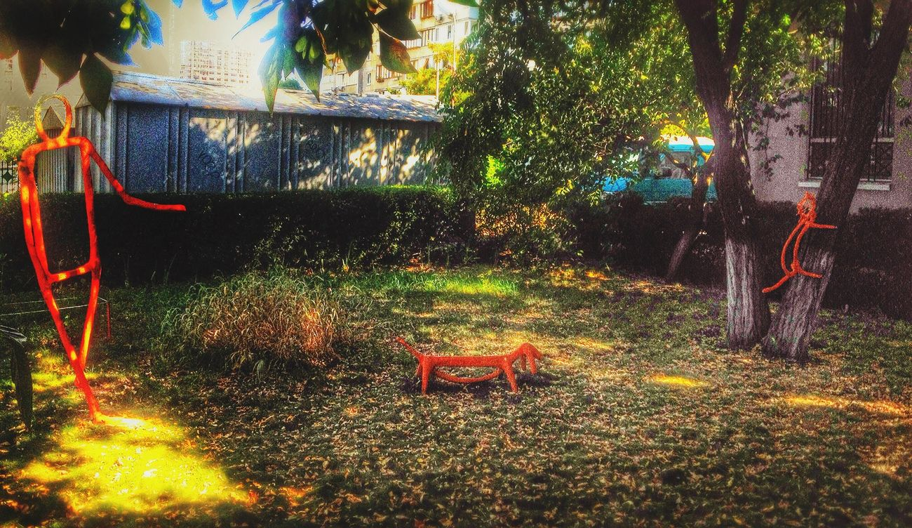 "Light And Shadow Enjoying Life HDR Playing ""walk their dachshund"""