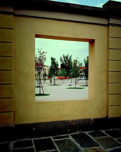 Vercelli Piemonte_best_pics Piemontese Piemontexperience Piemonte_bestsunset Piemonte Yellow Piemonteturismo Piemonte👍🏻 Piemonte_super_pics Piemonte_city Window Day Built Structure Architecture No People Building Exterior Outdoors Tree City