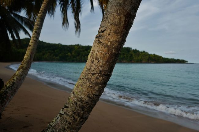 Africa Atlantic Beach Bombom BomBomResort Hotel Island Island Life Island Living Ocean Paradise Resort Sandy Sao Tome Sea Travel Travelling