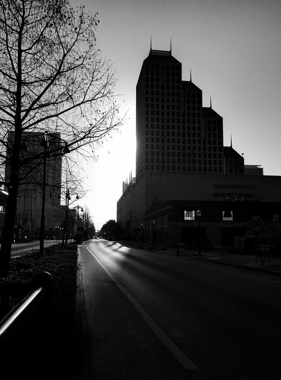 Morning in downtown Orlando florida Nature Architecture City Building Exterior Built Structure No People Tree Outdoors Day Skyscraper Sky Orlando Low Angle View City Downtown Tree Beauty In Nature Leonidas Urban Skyline Silhouette Building Florida Blackandwhite Street