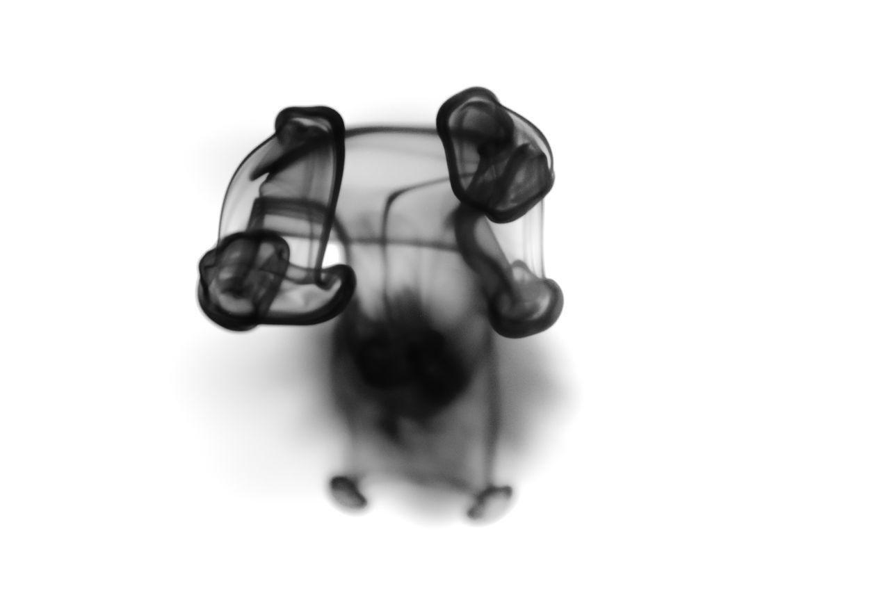 2017 Amazing Art Artist Beautiful Bestshot Black And White Close-up Day Dreaming Eyem Best Shots Free Ink New Nikon No People Studio Shot Water Water Art White Background