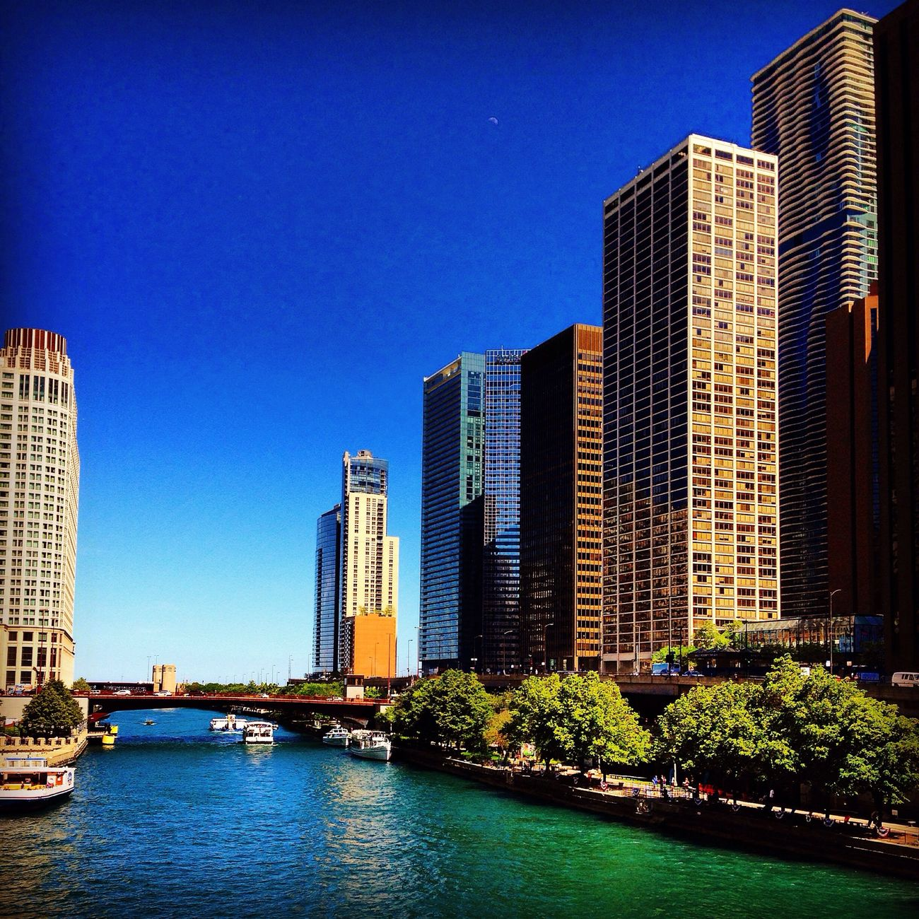 Cityscapes City Chicago