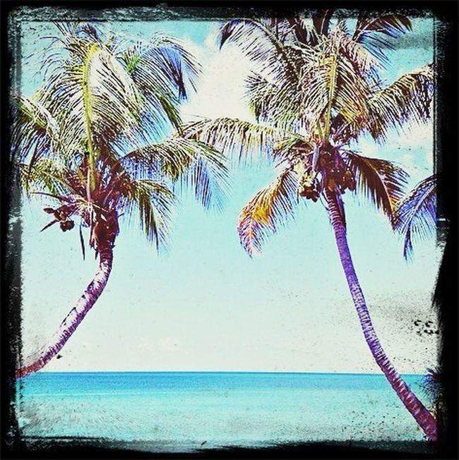 Chillin ok the beach