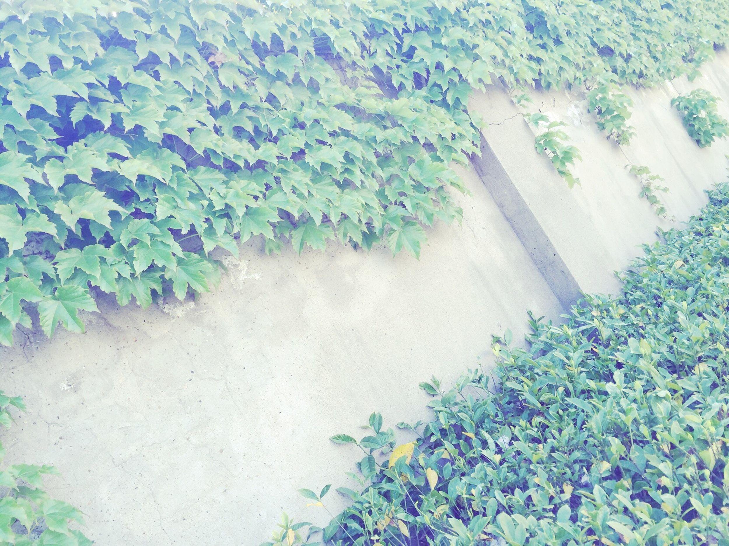 上学路上 First Eyeem Photo
