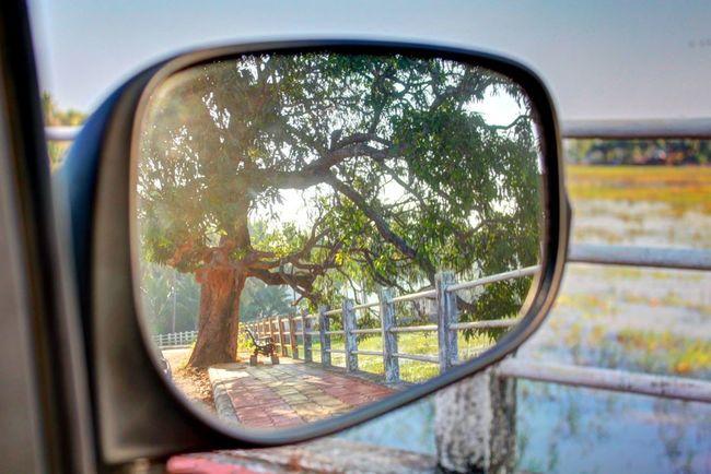 Rear View Rearview Rearviewmirror Rearview Mirror Rear View Mirror