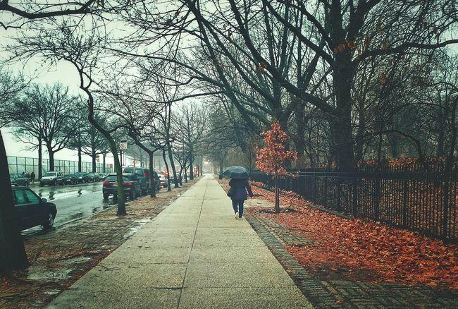 Newyork NYC New York City Streetphotography Street Photography Urbanphotography Open Edit EyeEm Best Shots Walking Around Taking Photos