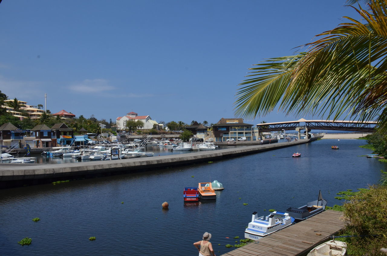 nautical vessel, water, boat, tree, transportation, moored, day, building exterior, palm tree, built structure, clear sky, mode of transport, architecture, outdoors, no people, harbor, sea, sky, nature