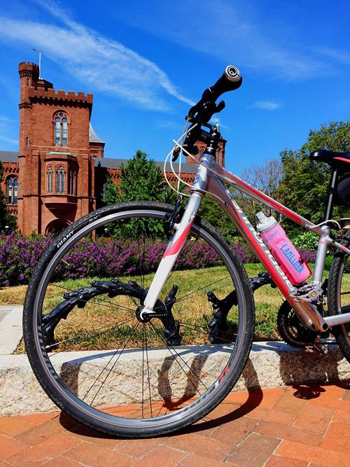 Castles and bicycles Out On The Town  Wandering Washington DC Bicycle Sunny Day Garden Castle Smithsonian What I Value Open Edit The Color Of Sport