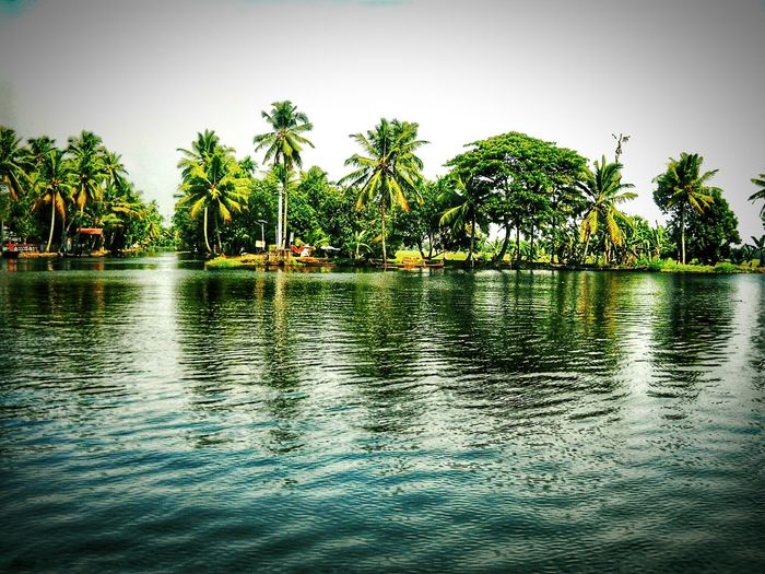 Coconut Trees Lovely View Water Reflections Nikon Coolpox D20 Nature_collection Backwaters Of Kerala Eyeem India - Kerala (god's Own Country ) EyeEm Best Shots EyeEm Best Edits Protect Nature 😀☺