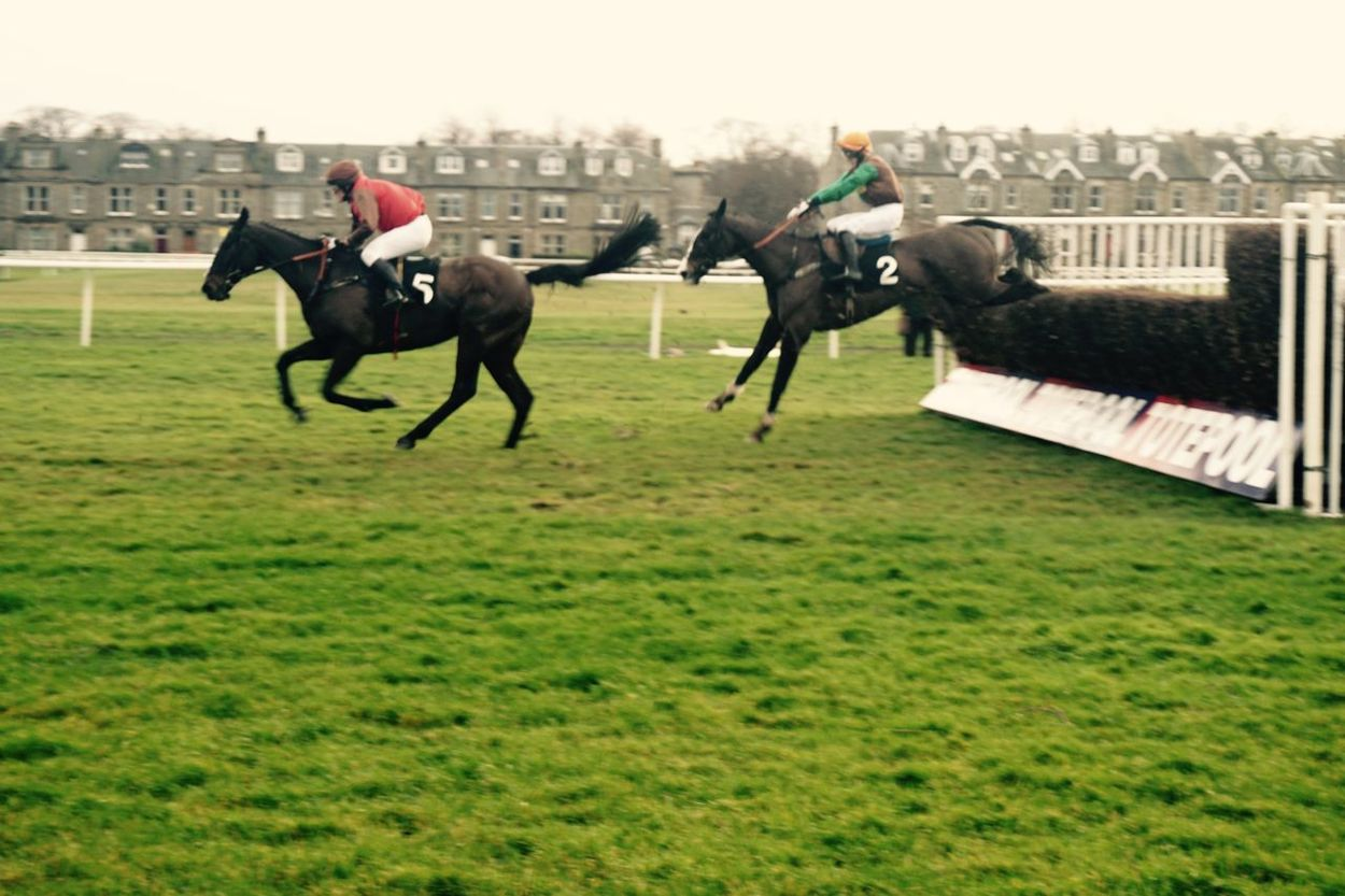 Horse races at Musselburgh Racecource Horses Scotland Sony A6000 Action Speed Learning United Kingdom Musselburgh Racetrack Racecourse Retro