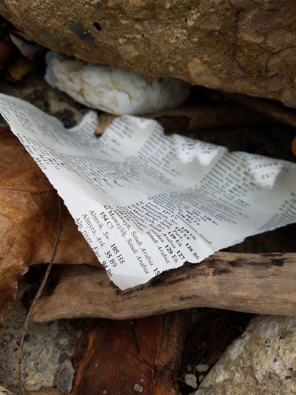 A dictionary page left torn on the beach. Profoundly relevant in America today. America Paper Rock - Object Close-up The Purist (no Edit, No Filter) No Edit/no Filter Looking At Things EyeEmNewHere Snapshot Dictionary Driftwood Litter Garbage Beach Life EyeEm Best Shots Backgrounds Ground Shot Urban Decay Thepowerofnature Drift Wood On Beach