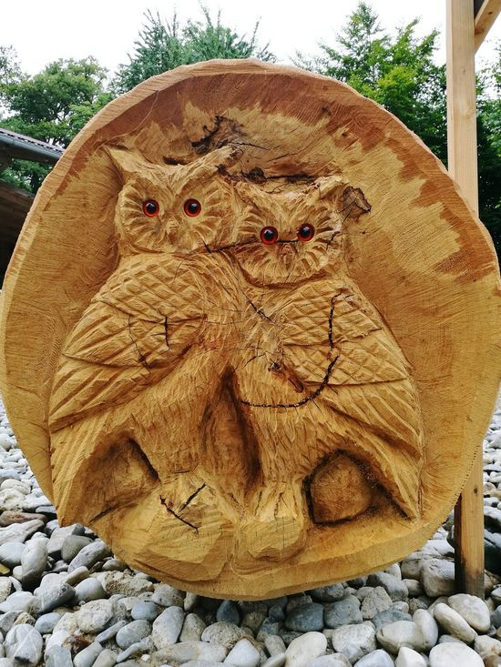 Owls💕 Wood - Material EyeEm Nature Lovers Eyeem Nature Eyeem Forest View Beauty In Nature Wood Work Work Tree Safe The Planet Eyeem Enjoying Life Take Photos No Food Beautiful Nature Check This Out Chilling Outside Nice View Big Forest Good Times Eulen Eulen Style  EyeEm First Photo