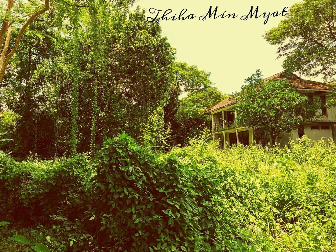 The Mysterious House Pro Redmi Note 3 Pro @Yangon,Myanmar