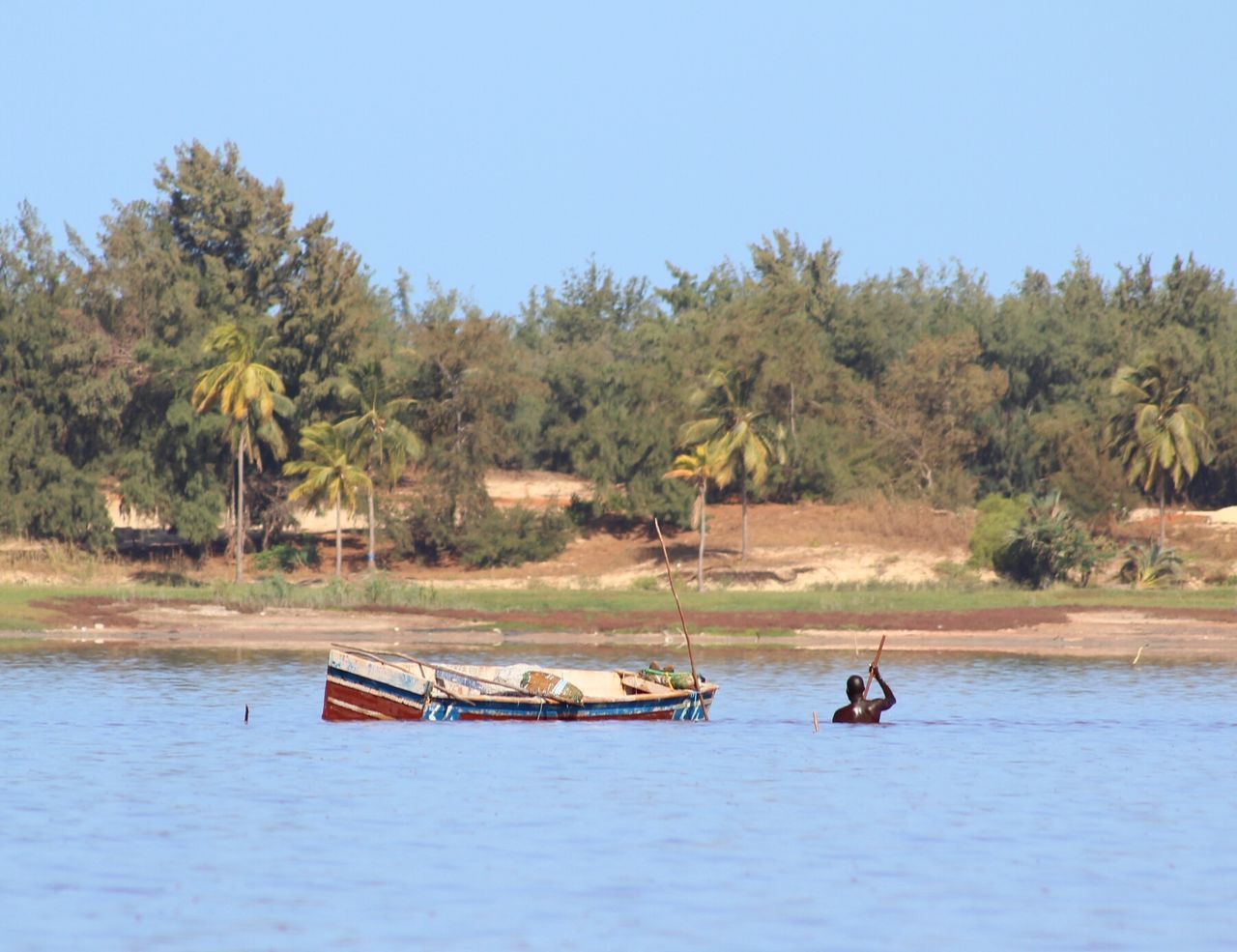 Water Tree Nautical Vessel Nature Transportation River Outdoors Palm Tree Day Clear Sky Landscape Adult Scenics Sky People Only Men Africa Senegal Raconets Lac Rose Viaje Escapada