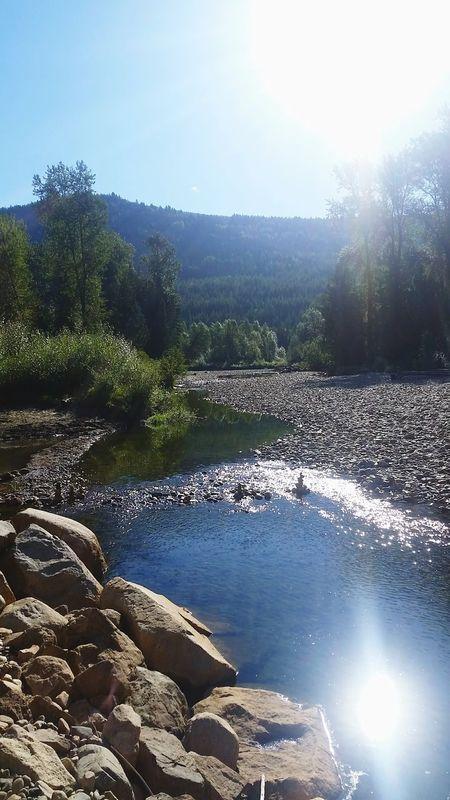 ♡ Canada Beauty Woke Up To This West Coast Trip Festival Shambhala River Sunshine