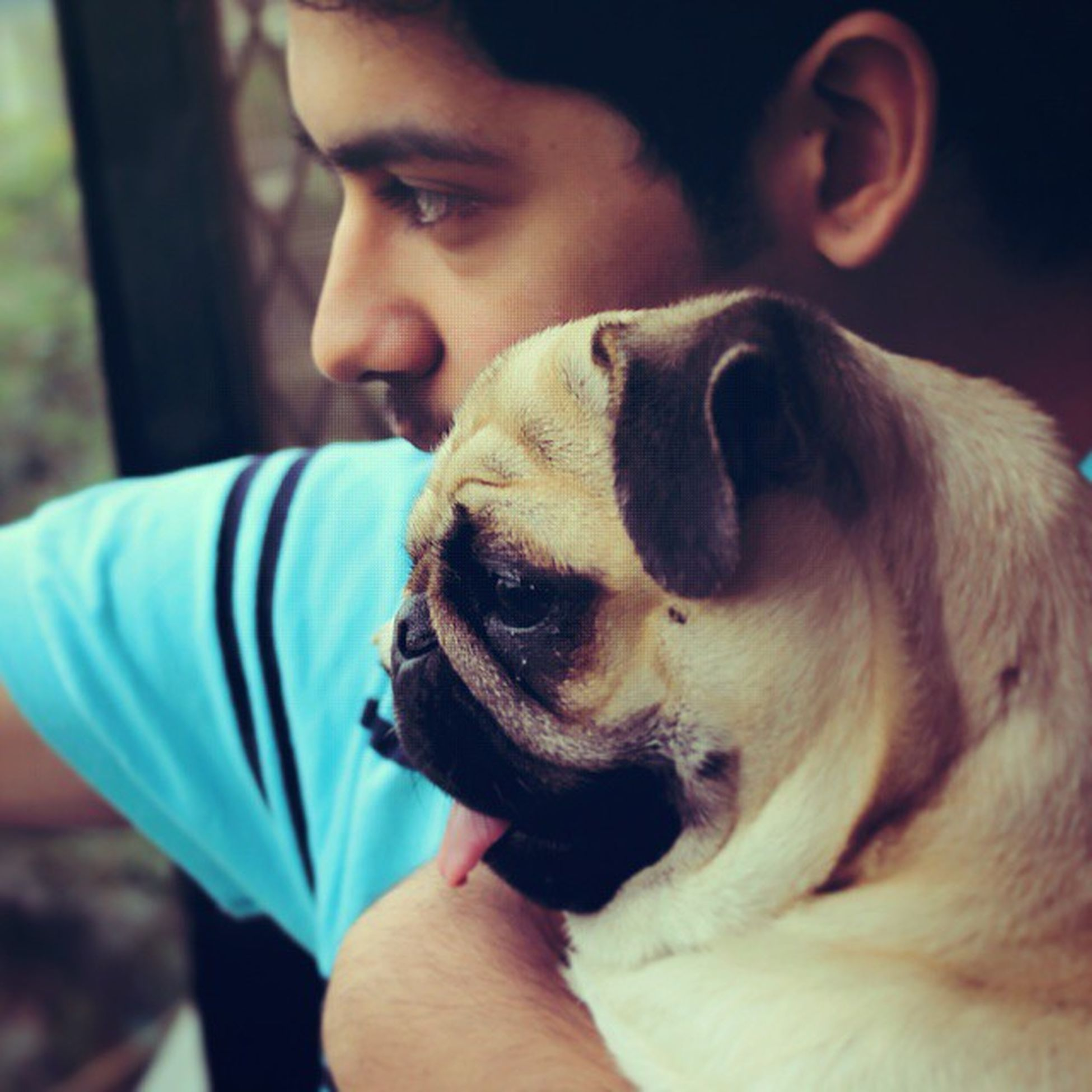 In love with these two Luvyoubro Pugrules
