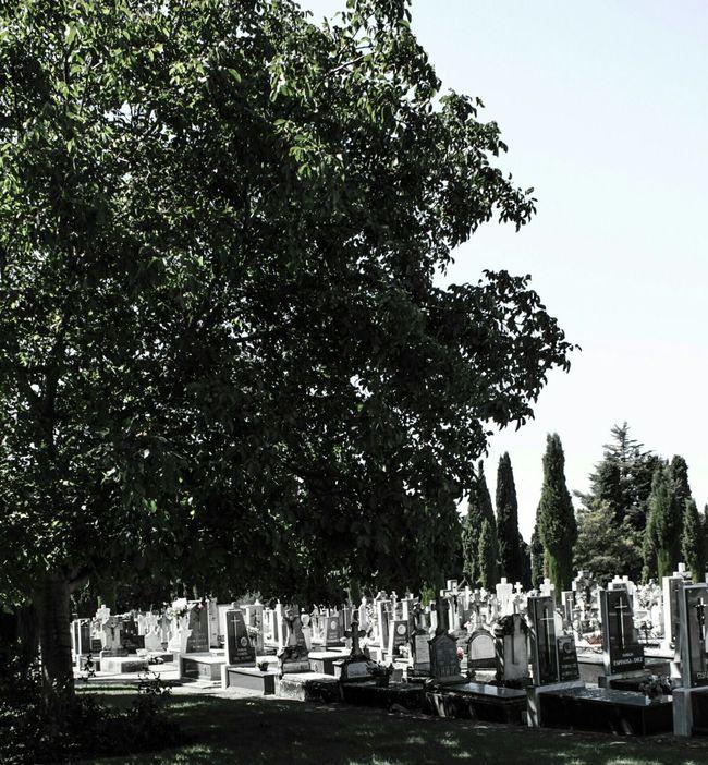Cementerio Cemeterybeauty Cemetery_lovers Paz Cemetery Series Cemetery_shots