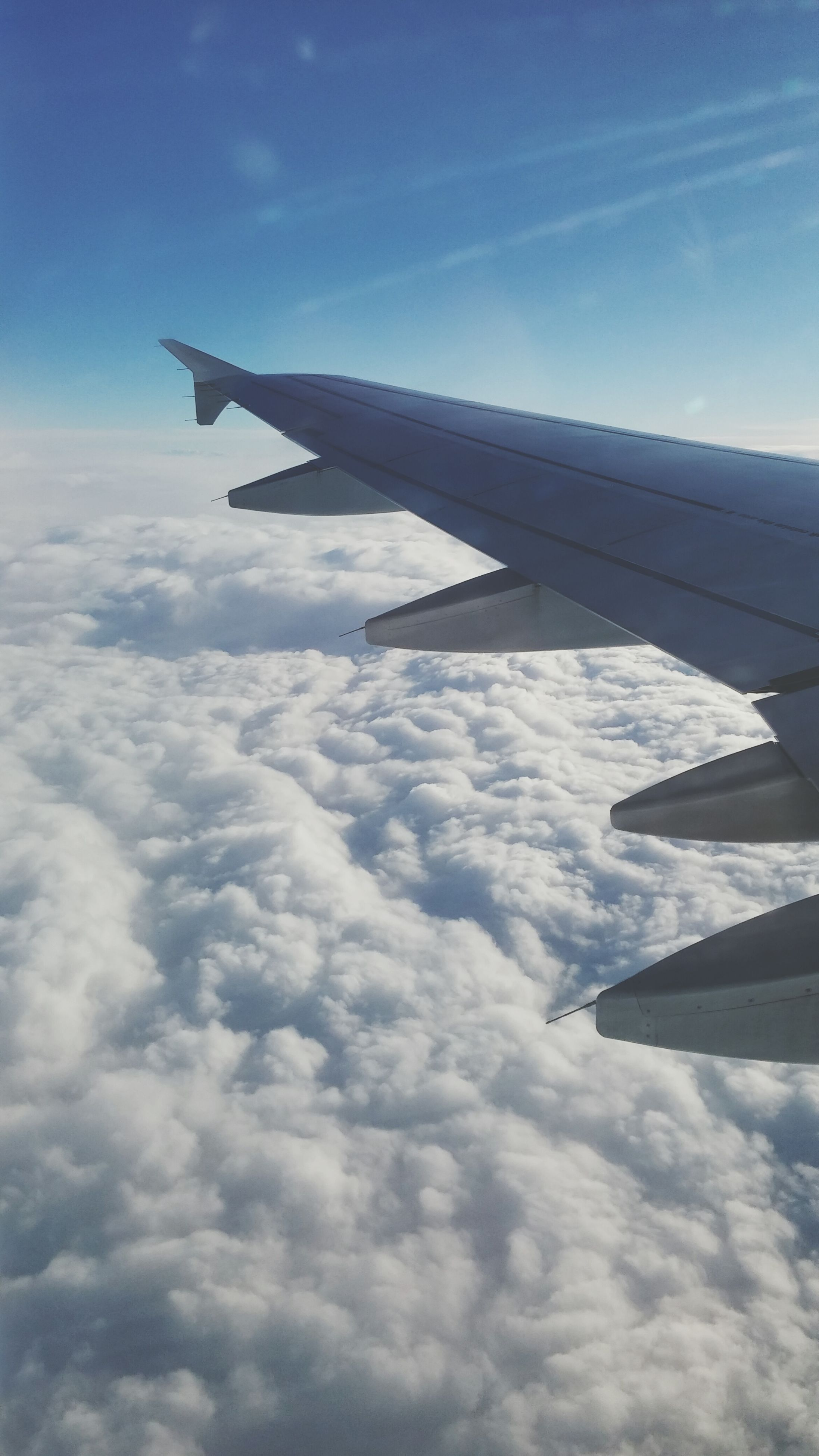 airplane, aircraft wing, air vehicle, flying, transportation, mode of transport, sky, part of, cloud - sky, mid-air, cropped, travel, aerial view, journey, on the move, public transportation, blue, cloud, cloudscape, airplane wing