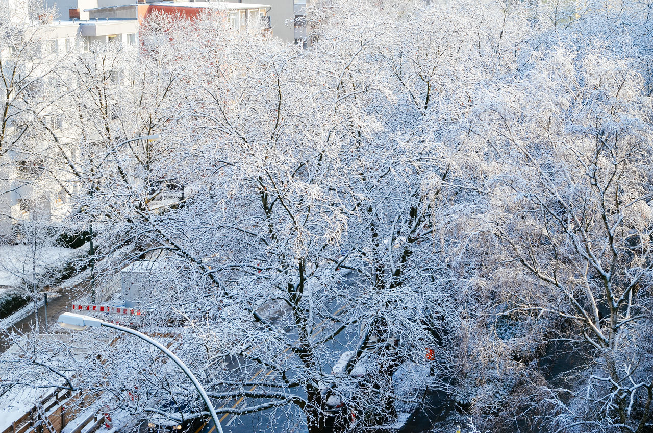 Backgrounds Berlin Cityscape Close-up Day Full Frame High Angle View Nature No People Outdoors Road Snow Street View From The Window... Winter Winter Wonderland Wintertime