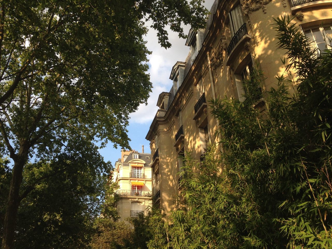 Unfiltered Paris Street