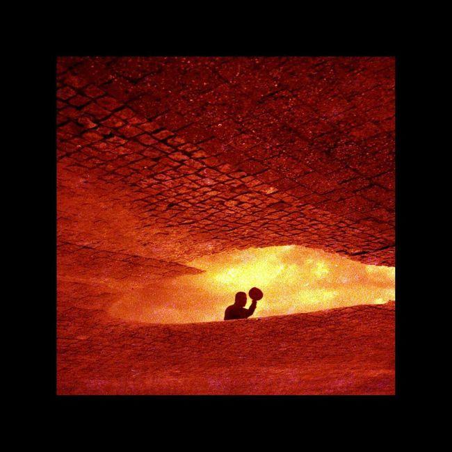 Ave ! Redbird Streetphotography Streetphoto_color Olympus XA Red Street Photography Analog Camera Analogue