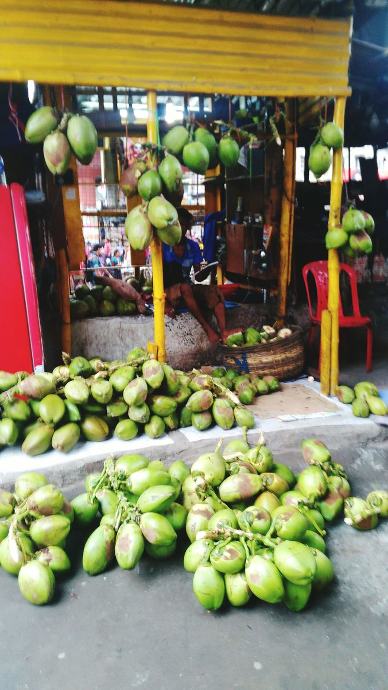 Green Coconuts Are On Sale At Belghoria