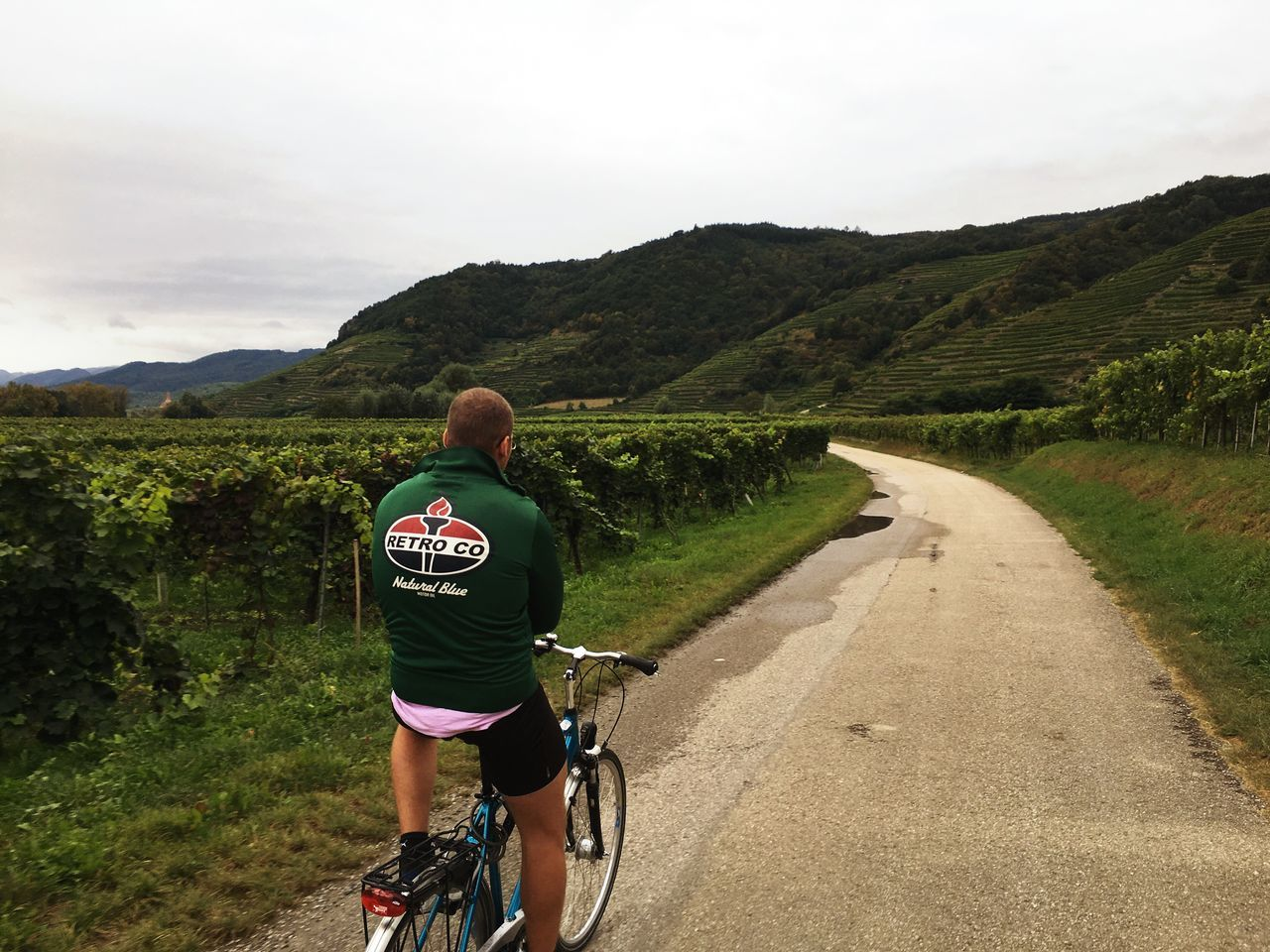 Wachau with my brother Bicycle Road Mountain The Way Forward Cycling Leisure Activity Country Road Countryside Brother Wachau Austria Vineyard People And Places