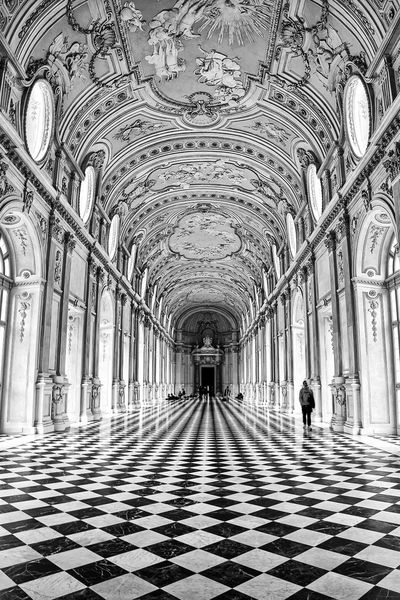 Arch Architecture Built Structure Ceiling City Day Group Of People Indoors  People The Way Forward Torino, Italy Tourist Travel Destinations Venaria Reale Art Is Everywhere Black And White Friday