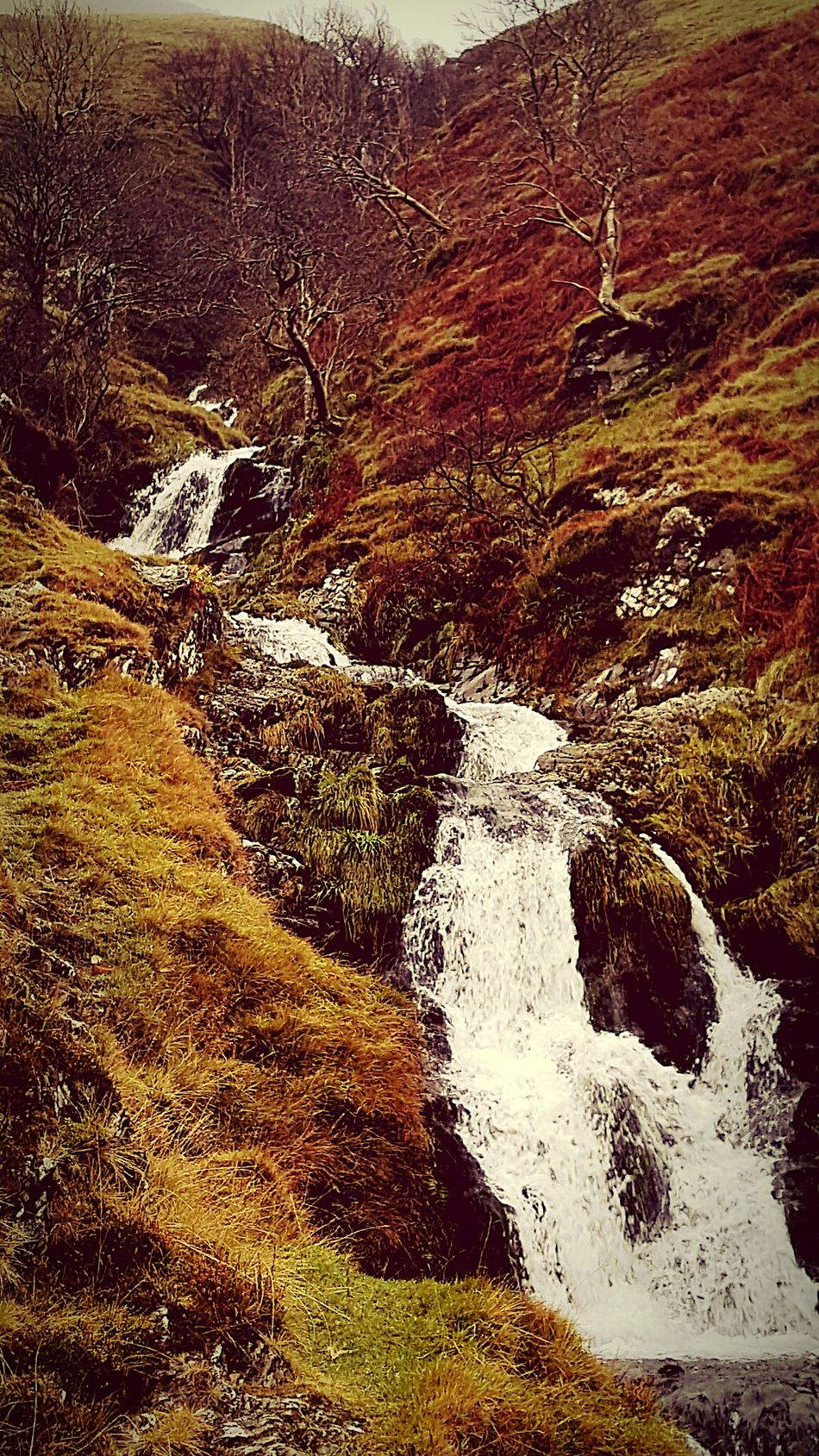 Taking Photos Waterfall_collection Water_collection Waterscape Waterfalls Waterfall Hillside Hill Side Views Enjoying The View Scenery Shots Scotland Relaxing Amazing View Autumn Beauty Autumn 2015 Autumn Colors Autumn🍁🍁🍁 Autumn Collection Beautiful Day Waterporn Water Falls Natural Beauty