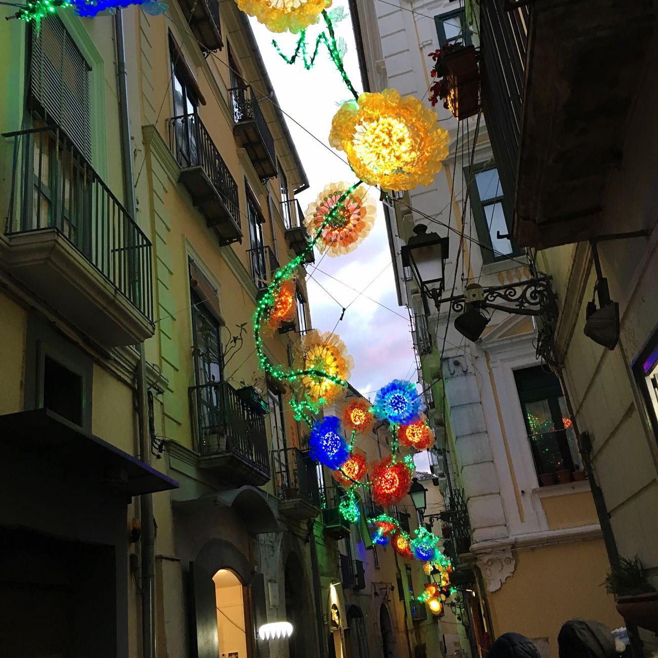 Adapted To The City Built Structure Building Exterior Architecture Low Angle View Hanging Multi Colored Street City Outdoors Variation Sky Illuminated No People Day