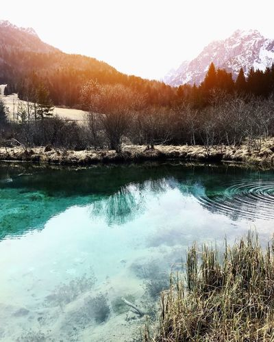 Kranjska Gora Zelenci Slovenia Nature Beautiful