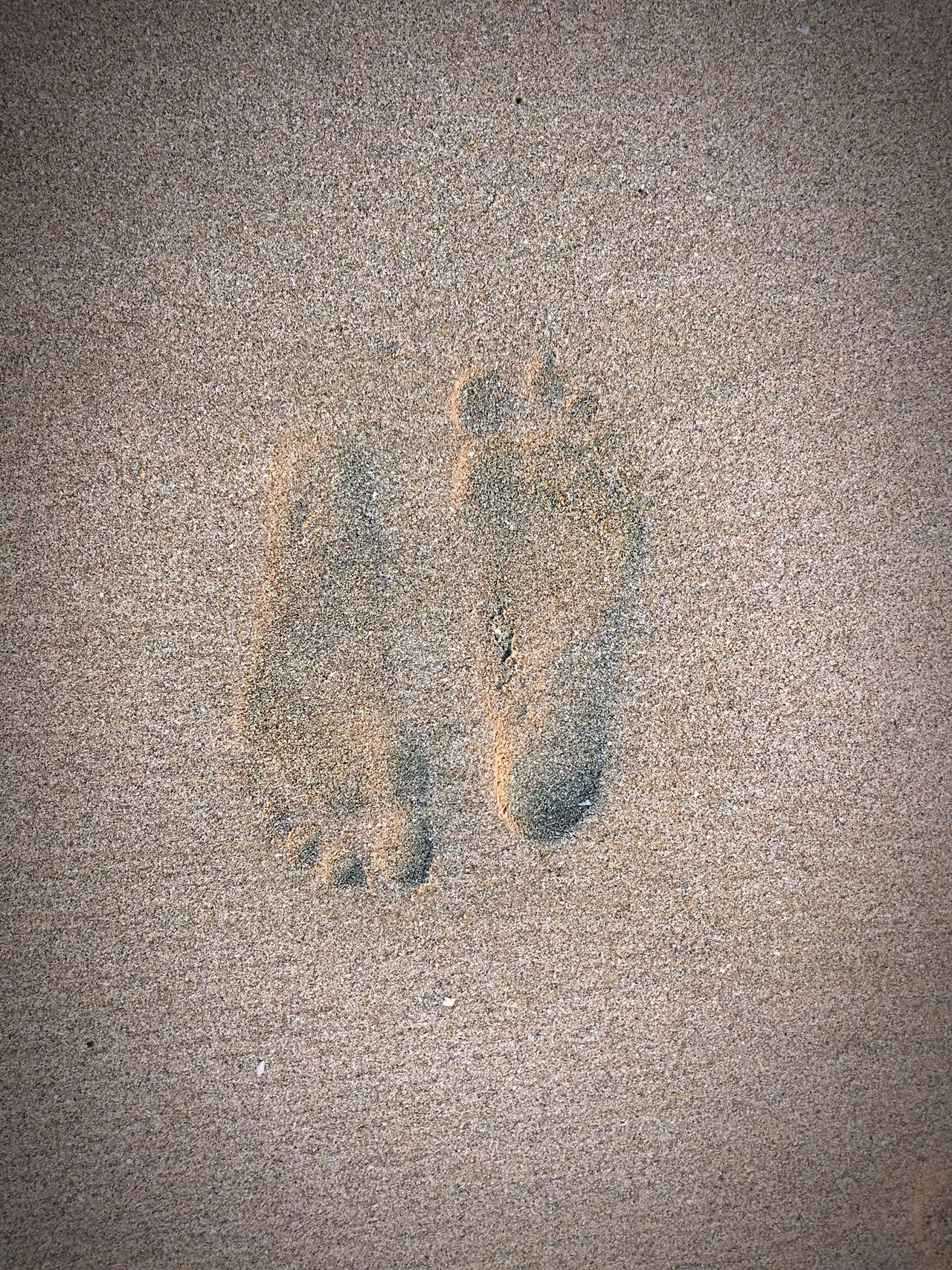 Sand Outdoors No People Nature Handprint Day Beach Paw Print Together Close To You Only Me Only You Thailand Timeless FootPrint Footprints Art Is Everywhere