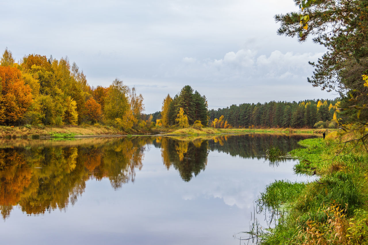 Autumn. On the river Mologa. A good place and time for vacation and fishing. Beauty In Nature Day Lake Landscape Mologa Natural Parkland Nature No People Outdoors Reflection Reflection Lake River View Scenics Sky Tourism Travel Travel Destinations Tree Vacations Water