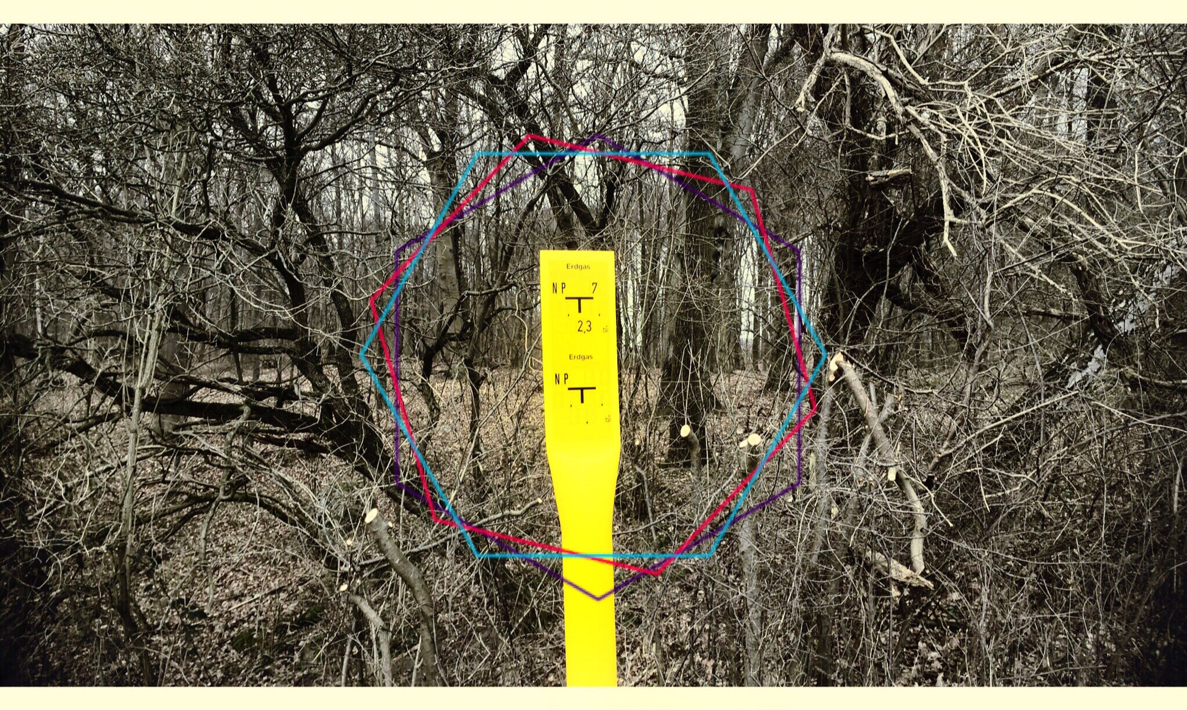 A Walk In The Woods Signs SignSignEverywhereASign Scrubs Thick Crossover Lerone-montage Passepartout Series Ps Geometries Trip