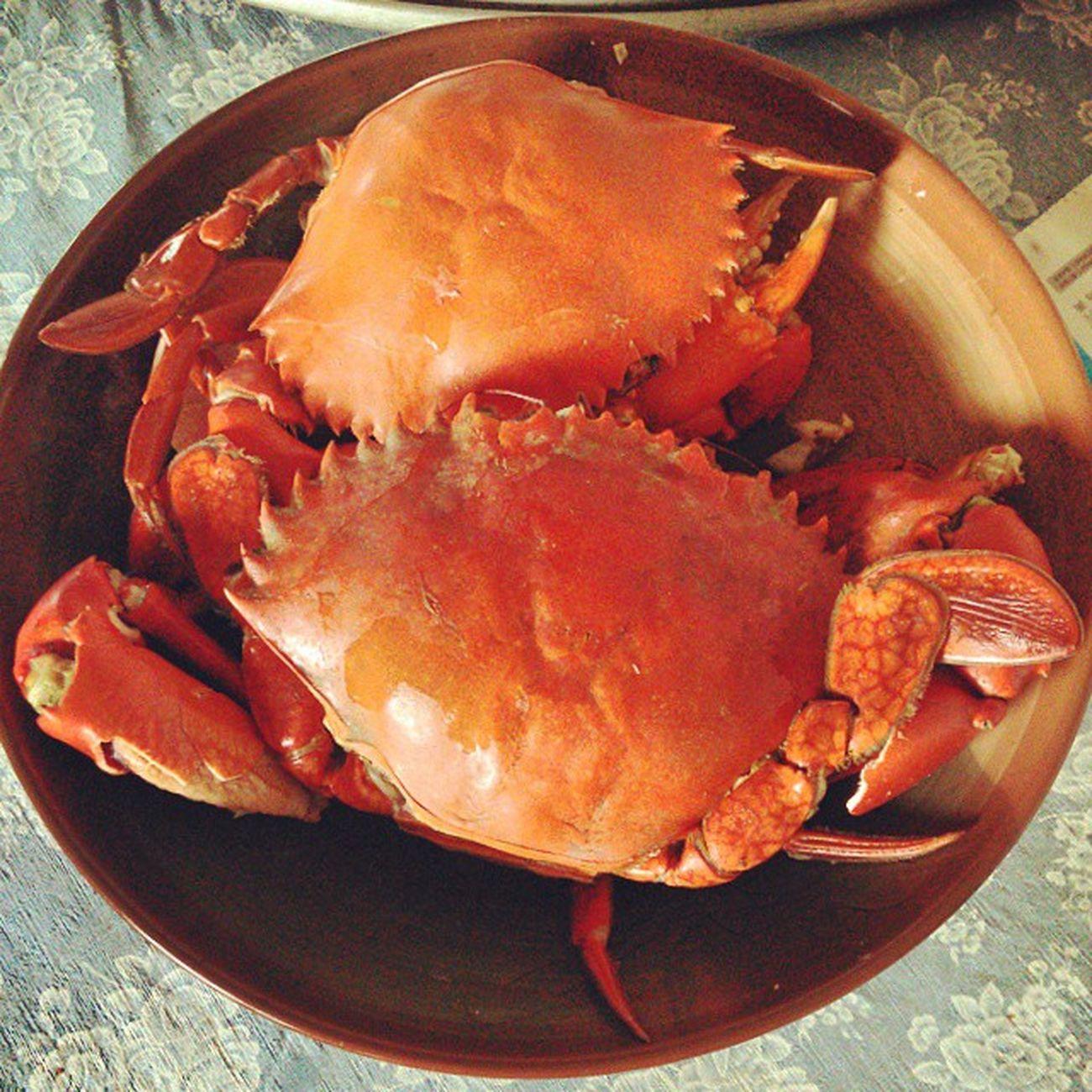 秋蟹。big crab かに 秋の味覚 あき Crab