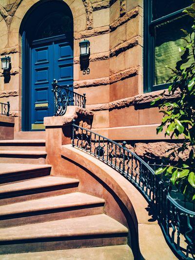 House Set RahimNoel Rahim New York NY NYC Vivid First Eyeem Photo No People Beauty In Nature Yellow Blue Love Beautiful Flower ❤ Calm House