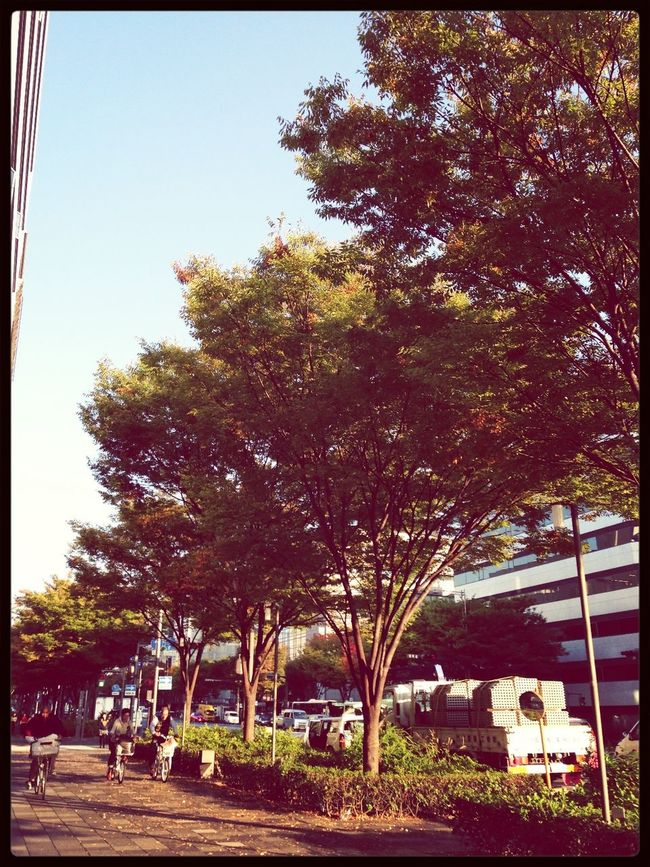 beautiful autumn weather. . :)