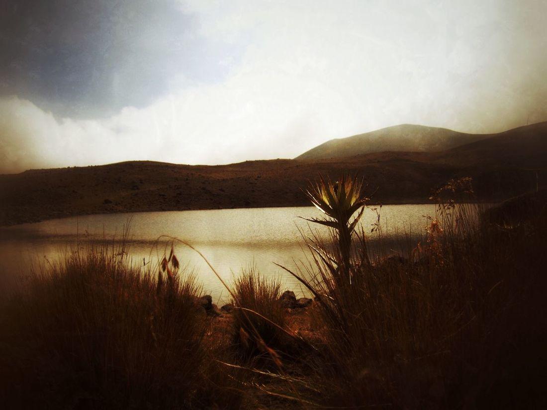 Naturaleza volcánica Toluca Xinantecatl El Nevado De Toluca Vista Desde El Nevado De Toluca Mexico Estado De México Mexico De Mis Amores